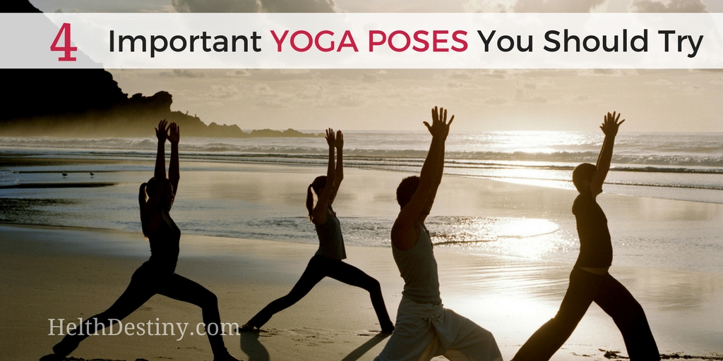 4 Must Do Daily Yoga Poses For Beginners